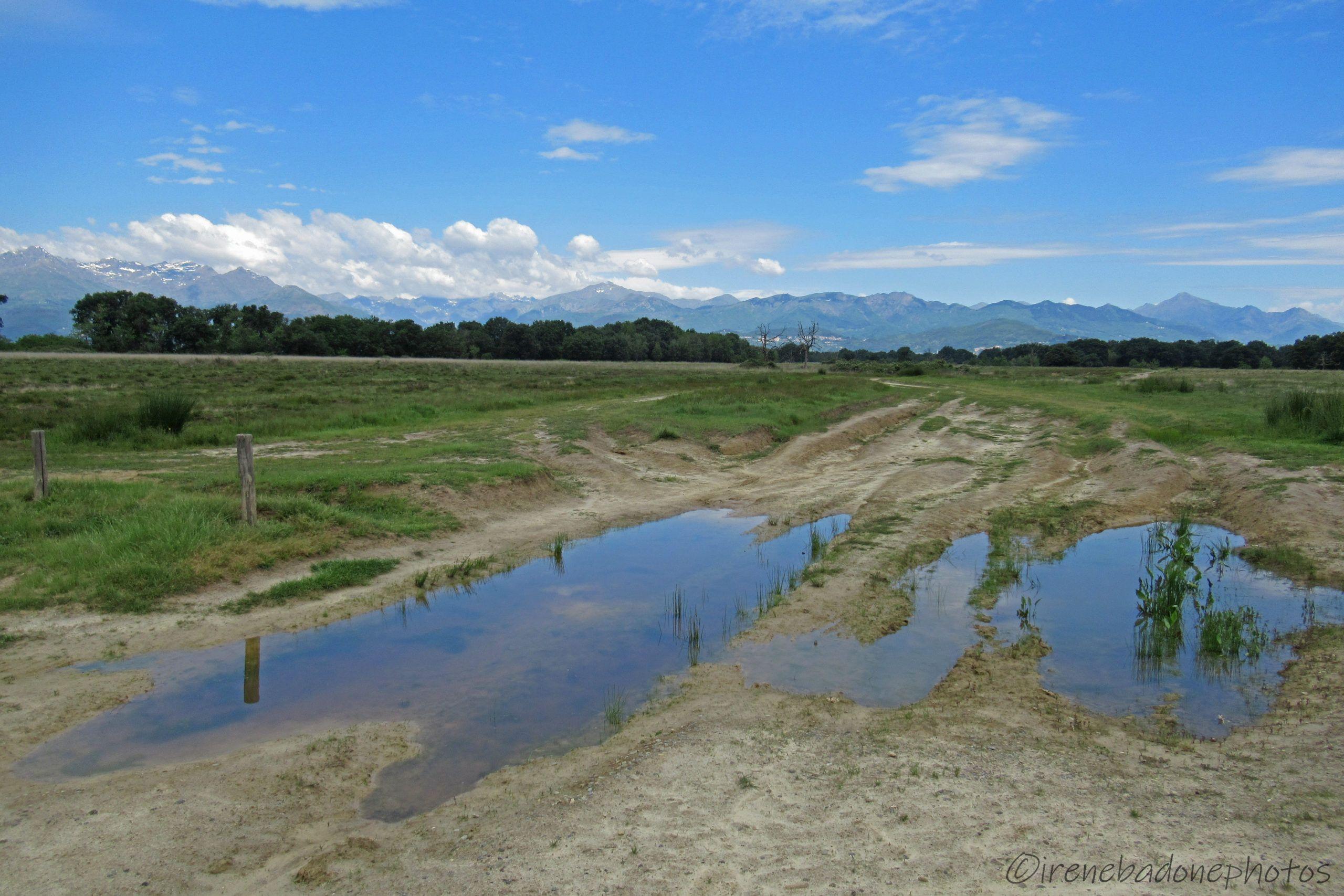 Inizio del percorso nella Riserva Naturale delle Baragge