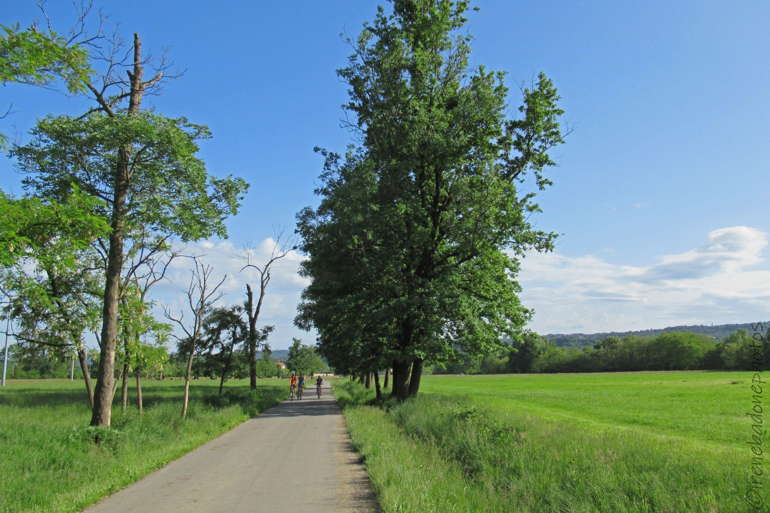 Antica strada per Borriana