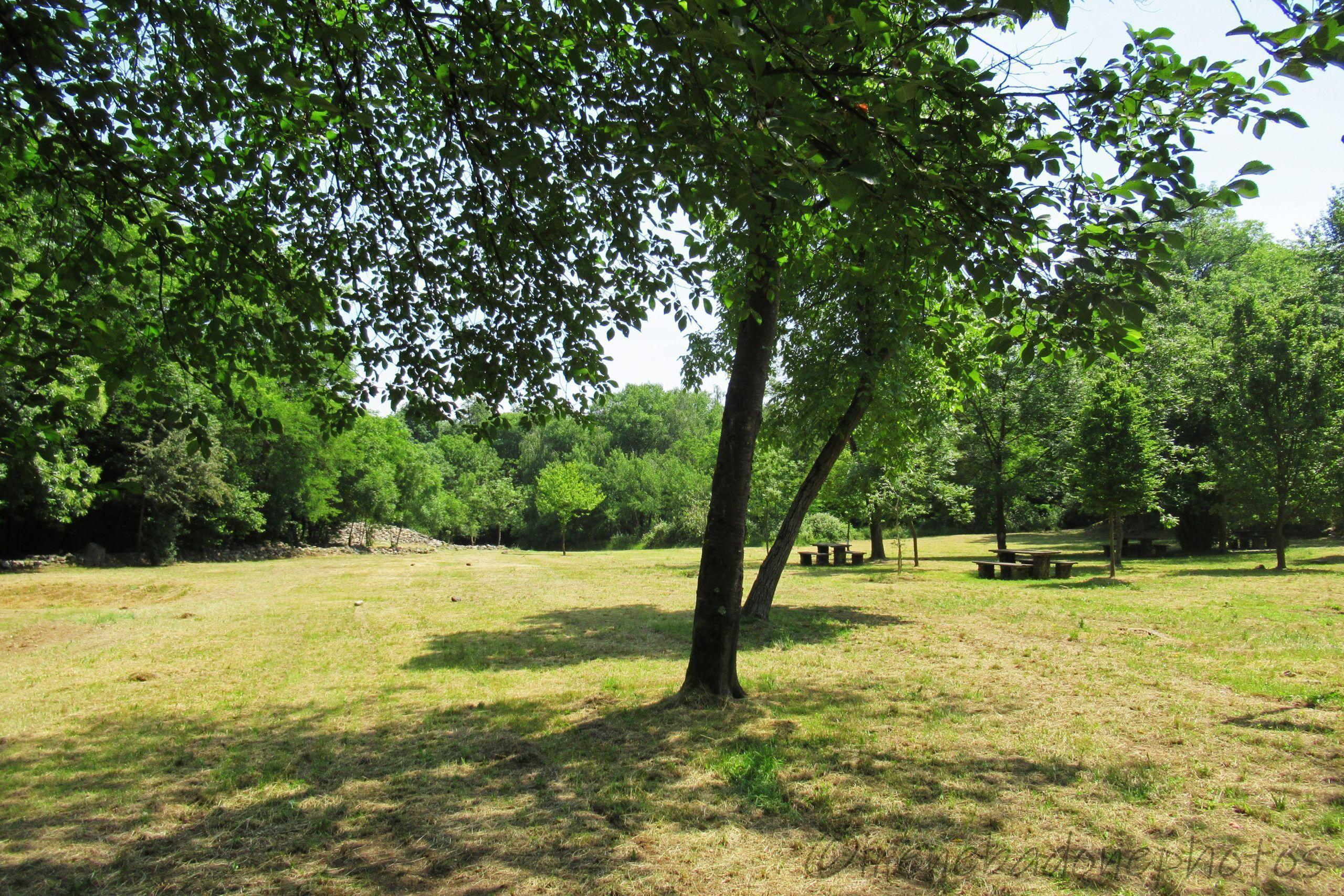 Area picnic di Victimula
