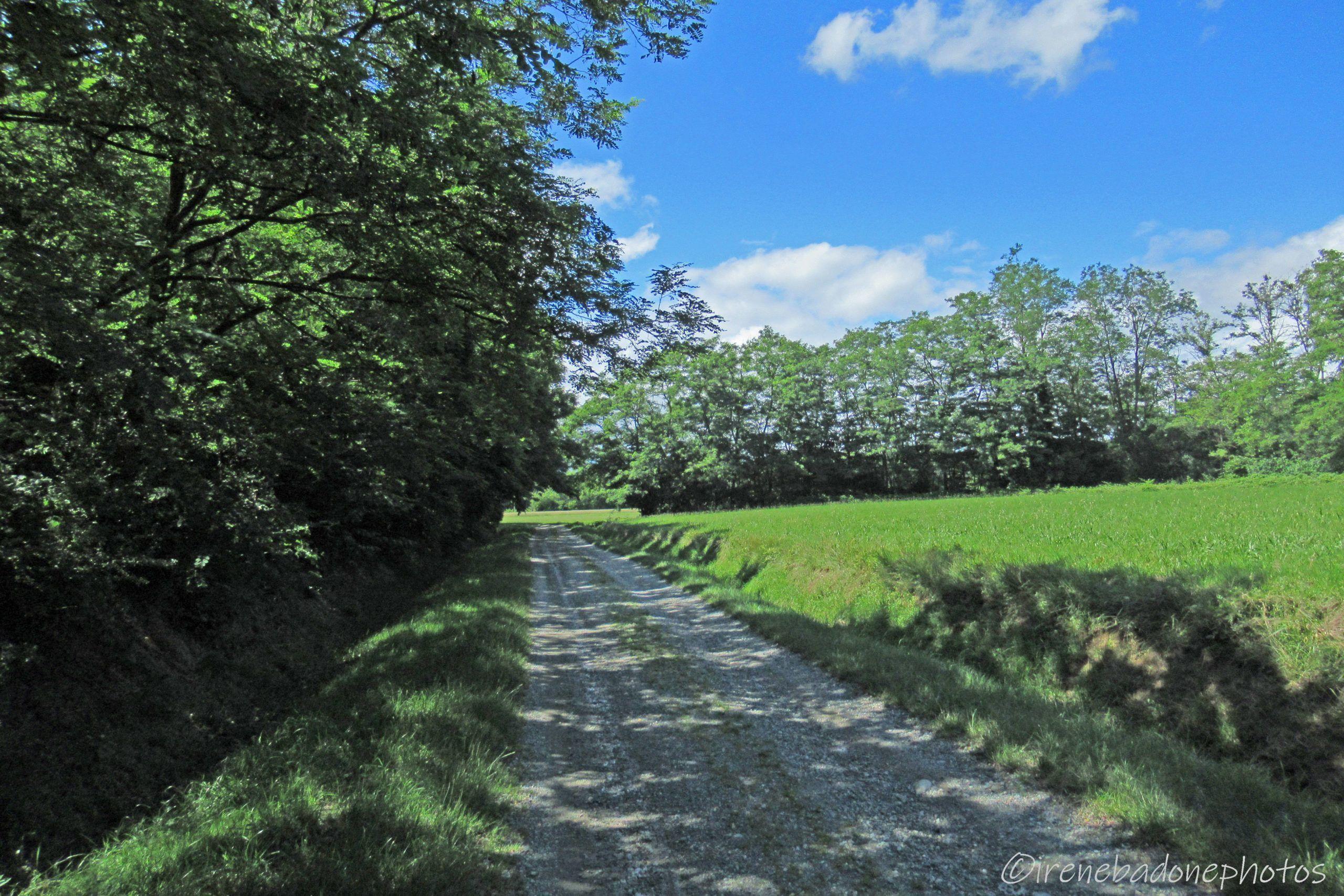 Sentiero verso Sandigliano