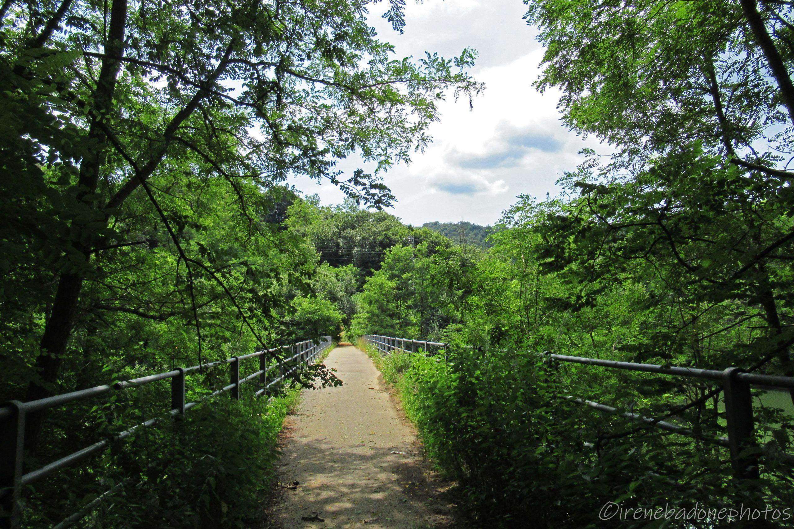 The bridge that crosses the lake of Ingagna